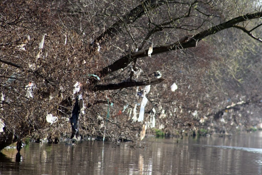 Litter along the banks of the Meuse river photographed near Maastricht, Holland. Courtesy of Gijsbert Tweehuysen, Waste Free Waters